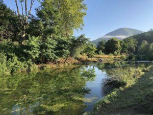 Rivière pêche camping Rennes-les-Bains